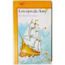 LOS OJOS DE AMY