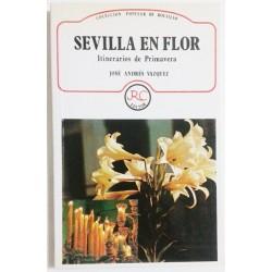 SEVILLA EN FLOR. ITINERARIOS DE PRIMAVERA